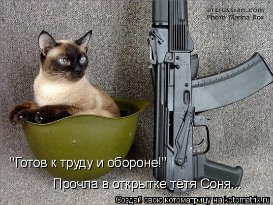 """Котоматрица: """"Готов к труду и обороне!"""" Прочла в открытке тётя Соня..."""