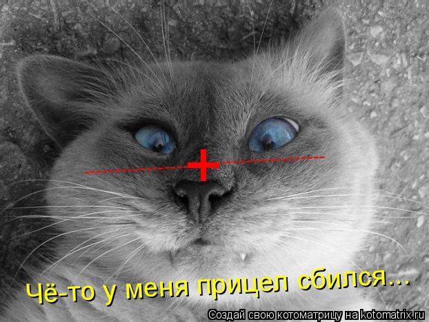 Котоматрица: + ----------------- ----------------- Чё-то у меня прицел сбился...