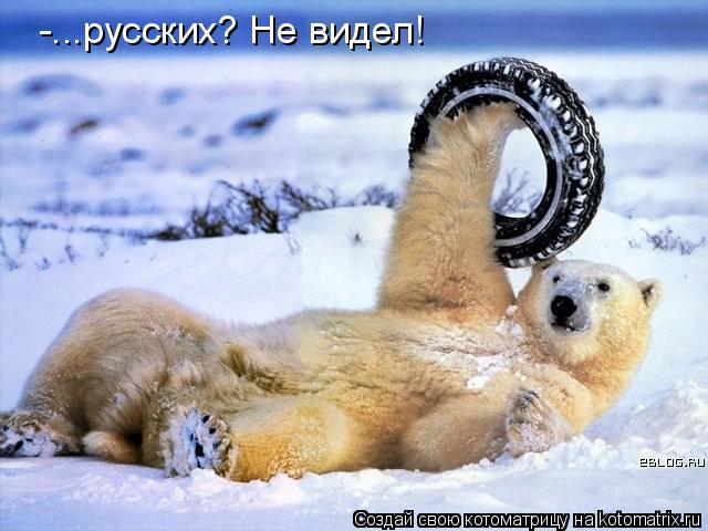 Котоматрица: -...русских? Не видел!