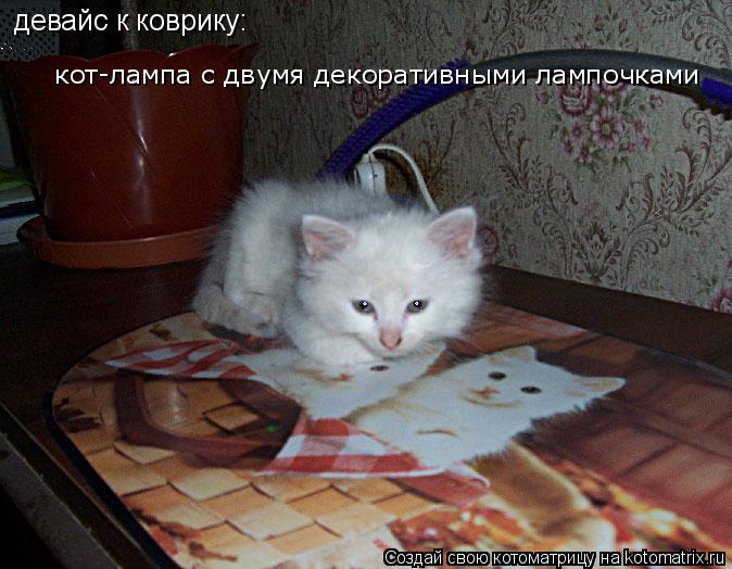 Котоматрица: кот-лампа с двумя декоративными лампочками  девайс к коврику: