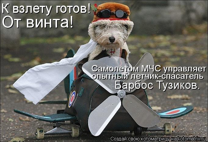 Котоматрица: К взлету готов! От винта! Самолетом МЧС управляет опытный летчик-спасатель Барбос Тузиков.