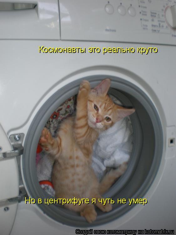 Котоматрица: Космонавты это реально круто Но в центрифуге я чуть не умер