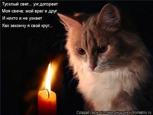 Котоматрица: Тусклый свет... уж догорает Моя свеча: мой враг и друг И никто и не узнает Как закончу я свой круг...