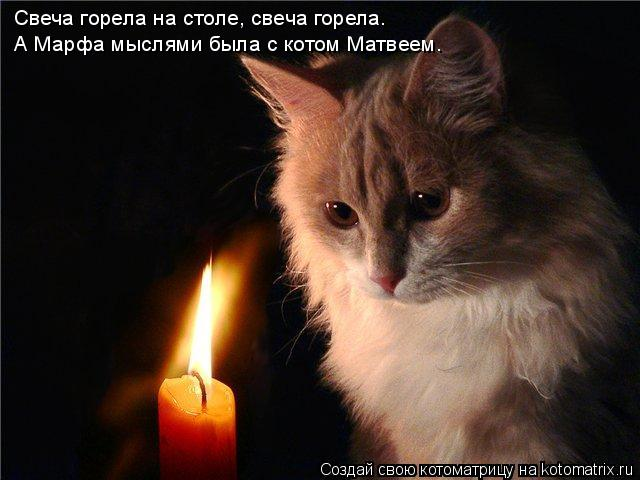 Котоматрица: Свеча горела на столе, свеча горела. А Марфа мыслями была с котом Матвеем.