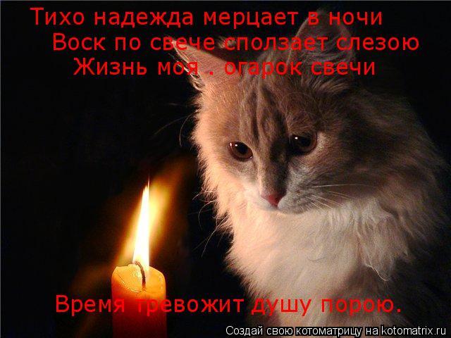 Котоматрица: Тихо надежда мерцает в ночи Воск по свече сползает слезою Жизнь моя – огарок свечи Время тревожит душу порою.