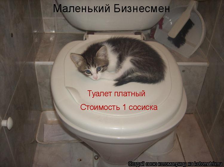 Котоматрица: Туалет платный Стоимость 1 сосиска Маленький Бизнесмен