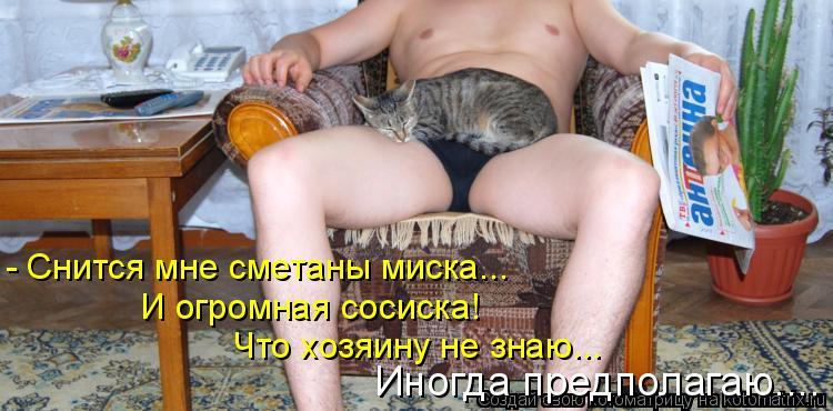Котоматрица: - Снится мне сметаны миска... И огромная сосиска! Что хозяину не знаю... Иногда предполагаю....