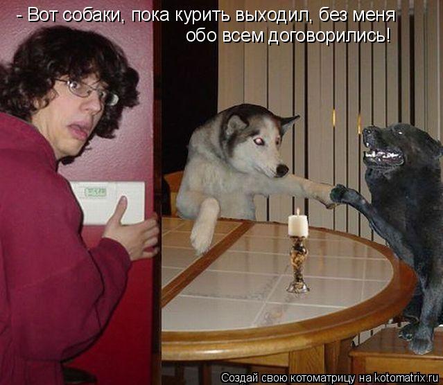 Котоматрица: - Вот собаки, пока курить выходил, без меня обо всем договорились!