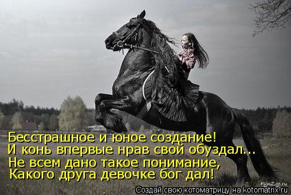 Котоматрица: Бесстрашное и юное создание! И конь впервые нрав свой обуздал... Не всем дано такое понимание, Какого друга девочке бог дал!