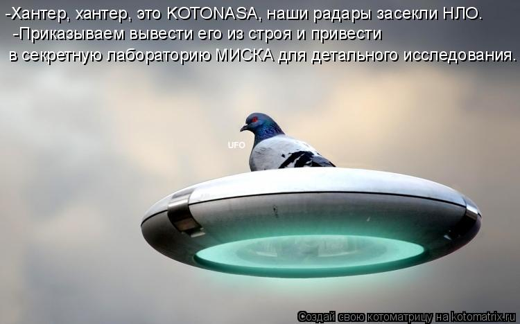Котоматрица: -Хантер, хантер, это KOTONASA, наши радары засекли НЛО. -Приказываем вывести его из строя и привести в секретную лабораторию МИСКА для детальног