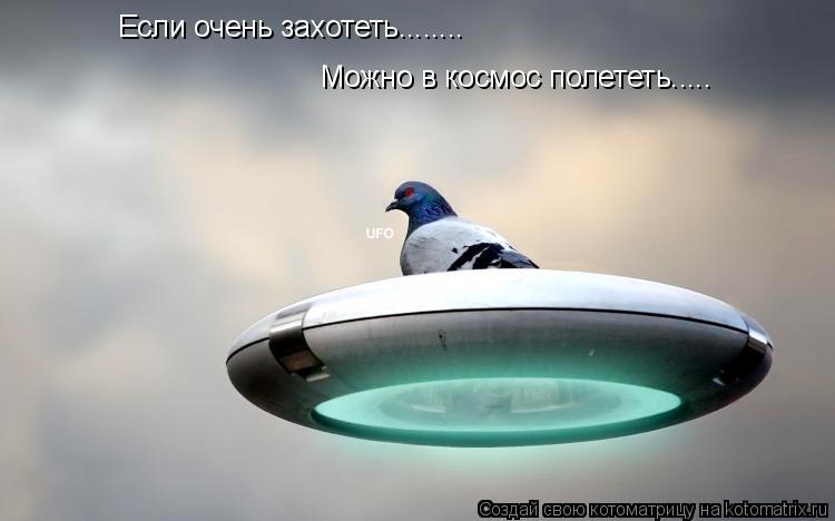 Котоматрица: Если очень захотеть........ Можно в космос полететь.....