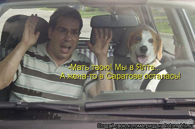 Котоматрица: -Мать твою! Мы в Ялте... А жена-то в Саратове осталась!