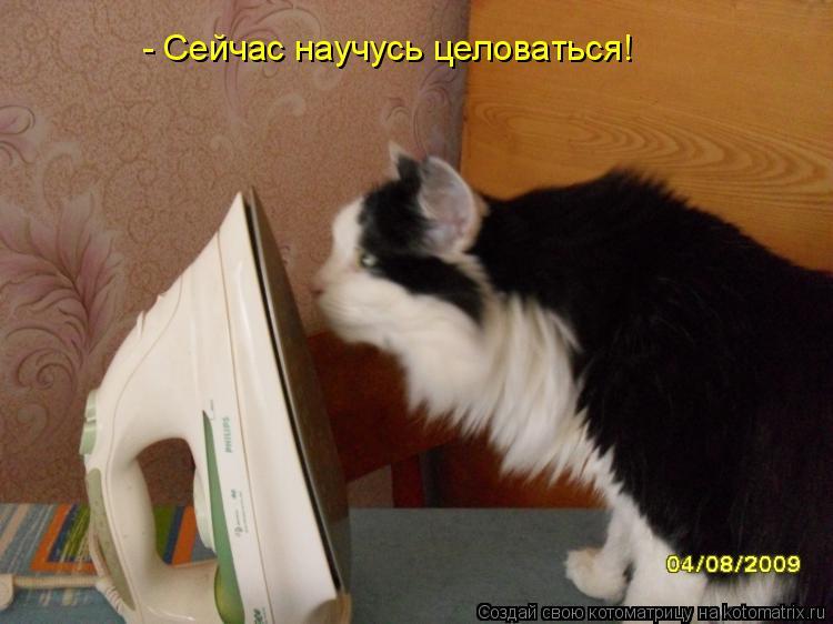 Котоматрица: - Сейчас научусь целоваться!