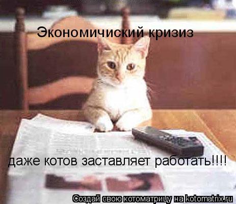 Котоматрица: Экономичиский кризиз даже котов заставляет работать!!!!