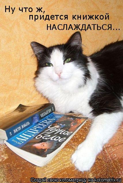 Котоматрица: Ну что ж, придется книжкой  НАСЛАЖДАТЬСЯ...