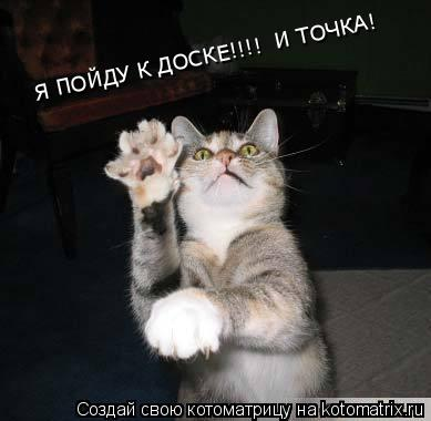 Котоматрица: Я ПОЙДУ К ДОСКЕ!!!!  И ТОЧКА!