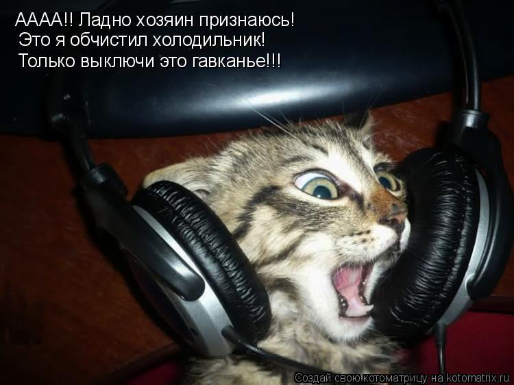 Котоматрица: АААА!! Ладно хозяин признаюсь!  Это я обчистил холодильник!  Только выключи это гавканье!!!