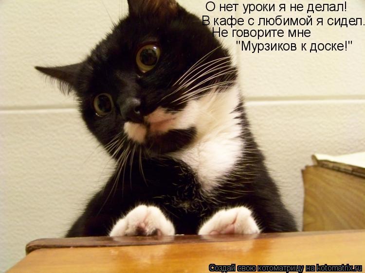 """Котоматрица: О нет уроки я не делал! В кафе с любимой я сидел... Не говорите мне """"Мурзиков к доске!"""""""