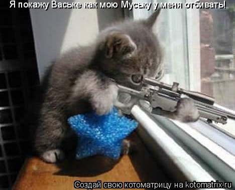 Котоматрица: Я покажу Ваське как мою Муську у меня отбивать!
