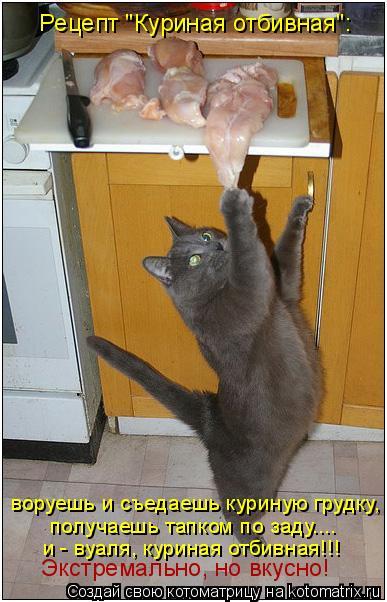"""Котоматрица: воруешь и съедаешь куриную грудку, получаешь тапком по заду.... и - вуаля, куриная отбивная!!! Экстремально, но вкусно!  Рецепт """"Куриная отбивна"""