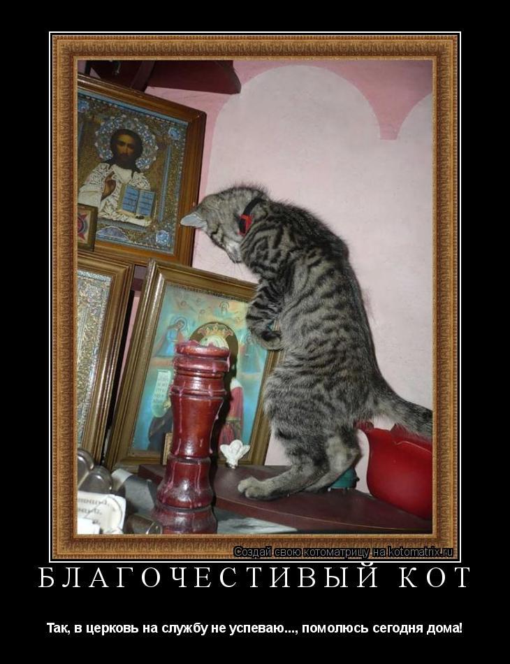 Котоматрица: Благочестивый кот Так, в церковь на службу не успеваю..., помолюсь сегодня дома!