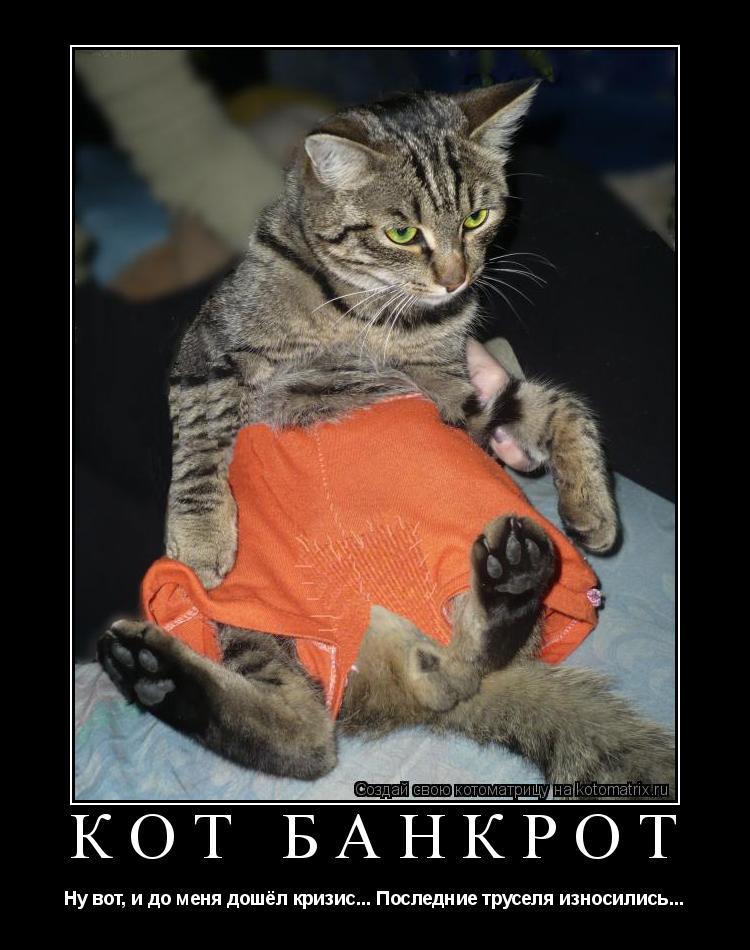 Котоматрица: Кот банкрот Ну вот, и до меня дошёл кризис... Последние труселя износились...