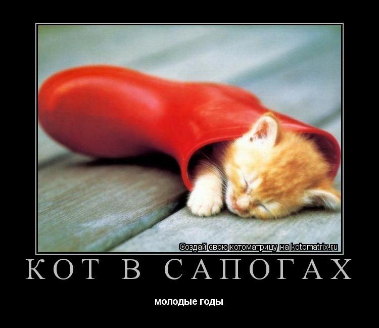 Котоматрица: кот в сапогах молодые годы