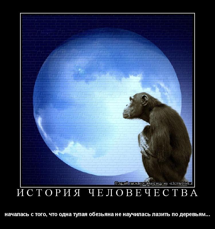Котоматрица: История человечества началась с того, что одна тупая обезьяна не научилась лазить по деревьям...
