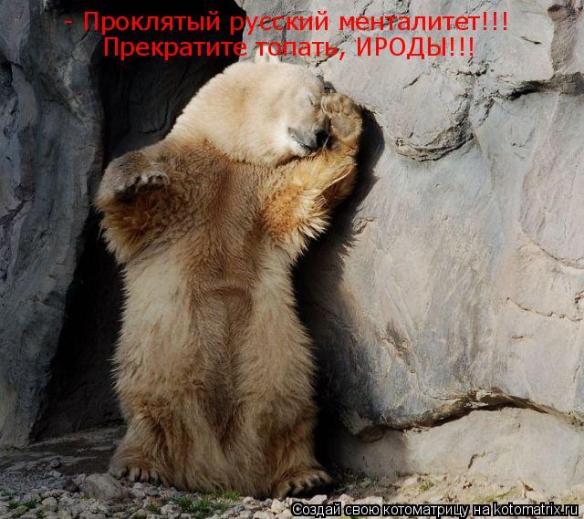 Котоматрица: - Проклятый русский менталитет!!! Прекратите топать, ИРОДЫ!!!
