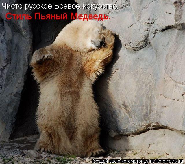 Котоматрица: Чисто русское Боевое искусство. Стиль Пьяный Медведь.