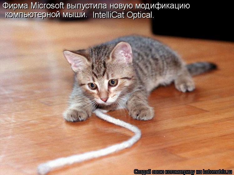 Котоматрица: Фирма Microsoft выпустила новую модификацию  компьютерной мыши. IntelliCat Optical.