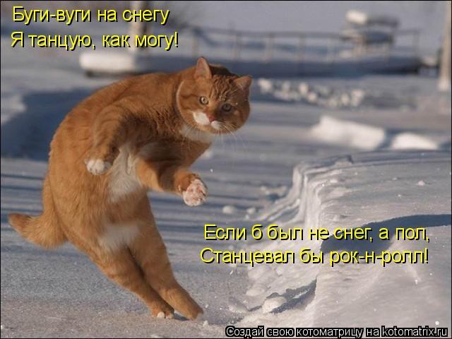 Котоматрица: Буги-вуги на снегу Я танцую, как могу! Если б был не снег, а пол, Станцевал бы рок-н-ролл!