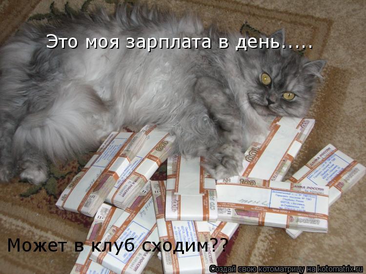 Котоматрица: Может Это моя зарплата в день..... Может в клуб сходим??