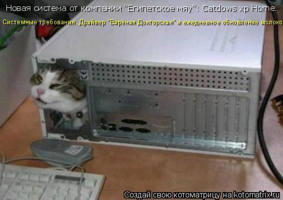 """Котоматрица: Новая система от компании """"Египетское мяу"""": Catdows xp Home.  Системные требования: Драйвер """"Варёная Докторская"""" и ежедневное обновление молоком."""