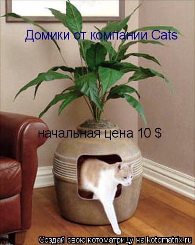 Котоматрица: Домики от компании Cats начальная цена 10 $