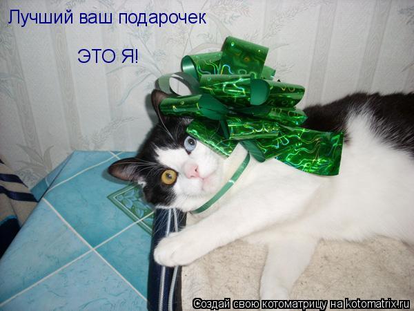 Котоматрица: Лучший ваш подарочек ЭТО Я!