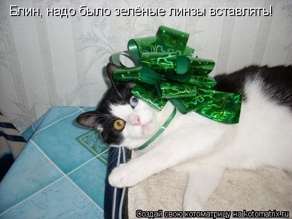 Котоматрица: Блин, надо было зелёные линзы вставлять!