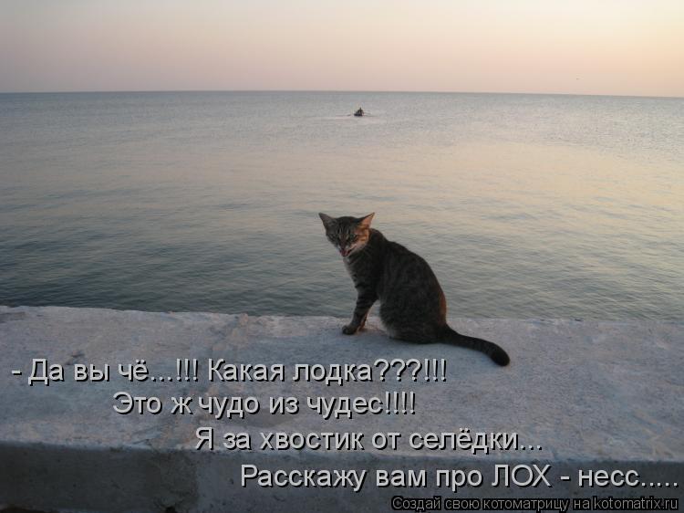 Котоматрица: - Да вы чё...!!! Какая лодка???!!! Это ж чудо из чудес!!!! Я за хвостик от селёдки... Расскажу вам про ЛОХ - несс.....