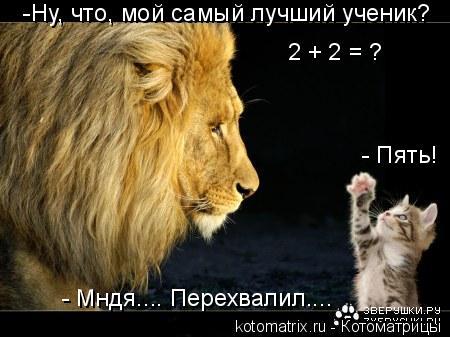 Котоматрица: -Ну, что, мой самый лучший ученик? 2 + 2 = ? - Пять!  - Мндя.... Перехвалил....