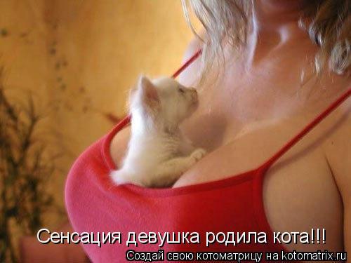 Котоматрица: Сенсация девушка родила кота!!!