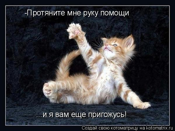 Котоматрица: -Протяните мне руку помощи ...и я вам еще пригожусь!