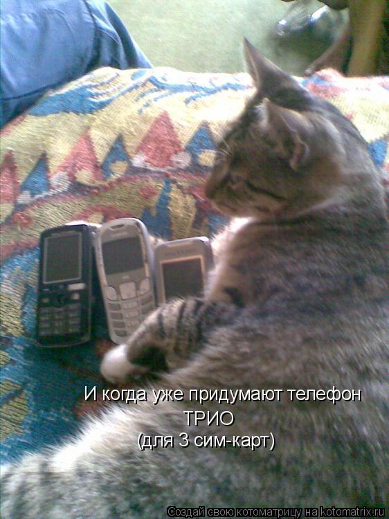 Котоматрица: И когда уже придумают телефон ТРИО (для 3 сим-карт)