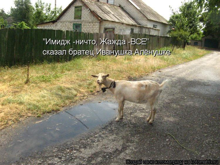 """Котоматрица: """"Имидж -ничто, Жажда -ВСЕ"""" сказал братец Иванушка Алёнушке"""