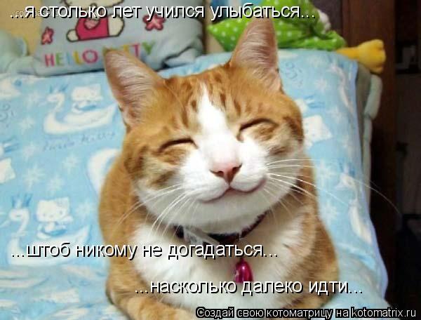 Котоматрица: ...насколько далеко идти... ...я столько лет учился улыбаться... ...штоб никому не догадаться...