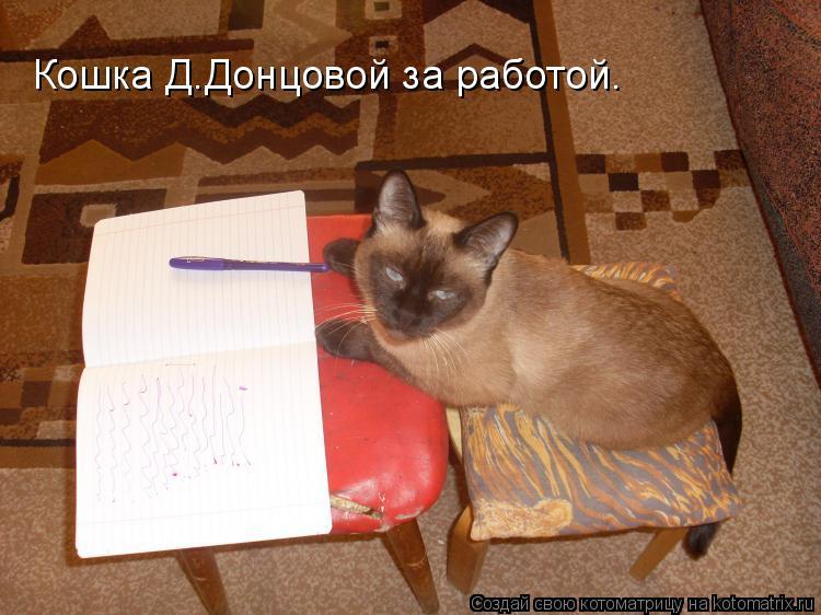 Котоматрица: Кошка Д.Донцовой за работой.