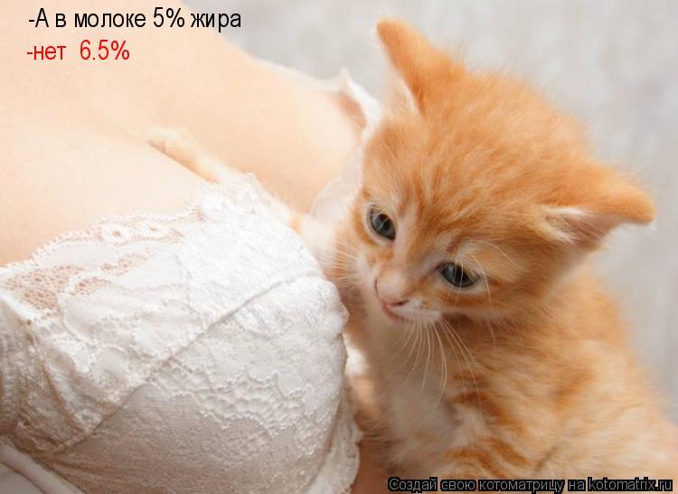Котоматрица: -А в молоке 5% жира -нет  6.5%