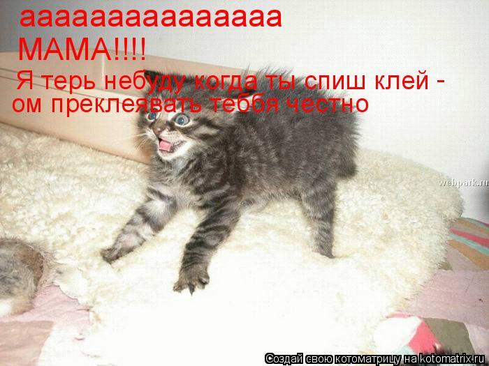 Котоматрица: ааааааааааааааа МАМА!!!! Я терь небуду когда ты спиш клей - ом преклеявать теббя честно