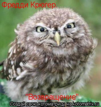 """Котоматрица: Фредди Крюгер. """"Возвращение"""""""