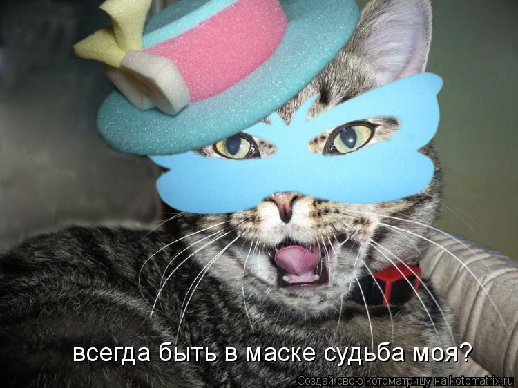 Котоматрица: всегда быть в маске судьба моя?