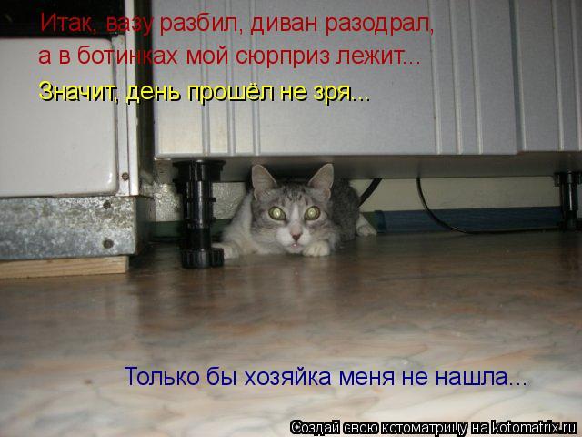 Котоматрица: Только бы хозяйка меня не нашла... Итак, вазу разбил, диван разодрал, а в ботинках мой сюрприз лежит... Значит, день прошёл не зря...